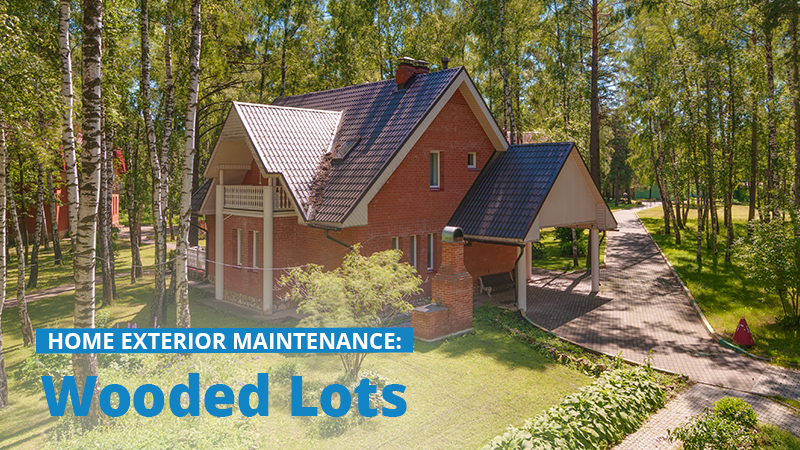 Home Exterior Maintenance: Wooded Lots