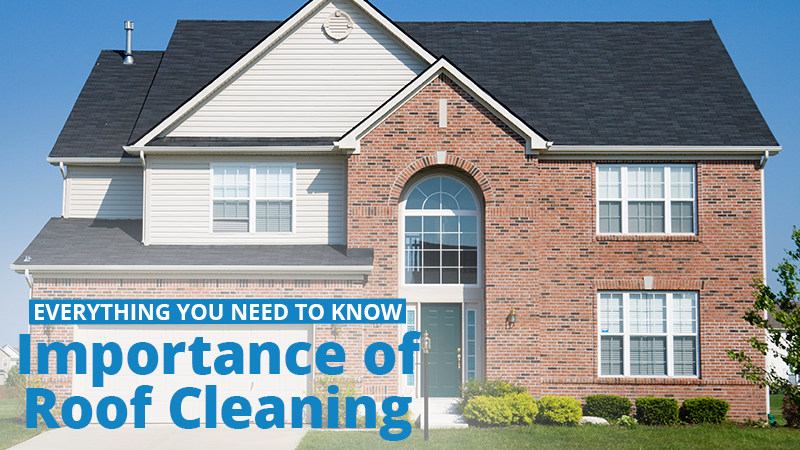 Why is it Important to Clean Your Roof?