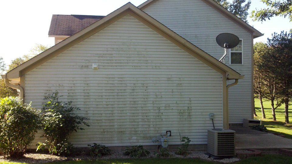 1 vinyl Siding Cleaning Before